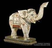 Ivory elephane