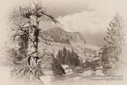 Antique Sierra