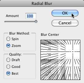The Radial Blur Filter Dialog Box