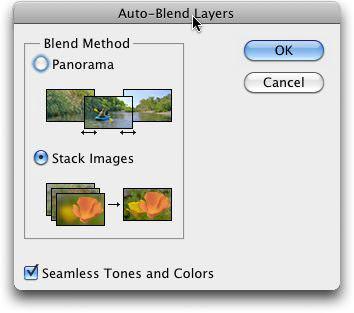 The Auto-Blend Dialog Box