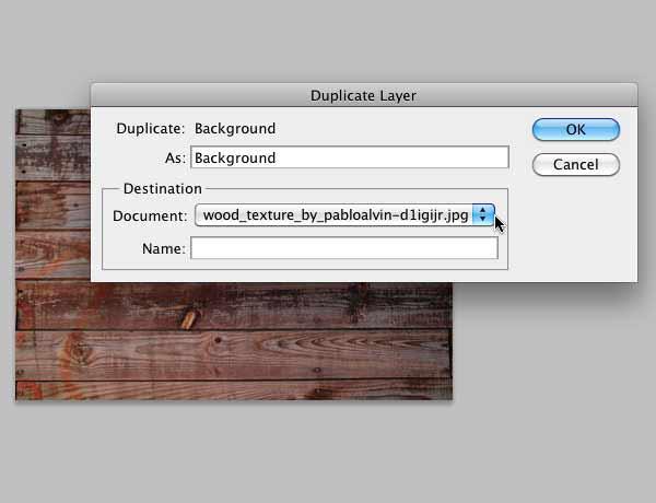 "The ""Duplicate Layer"" dialog box"