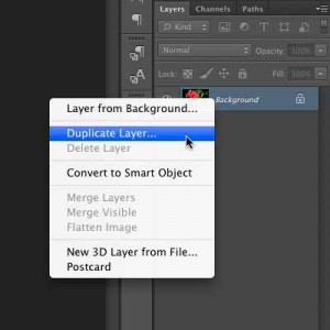 """Selecting the """"Duplicate Layer"""" Option."""